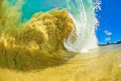 sandclark